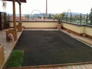 النظام المكثف لزراعة الأسطح