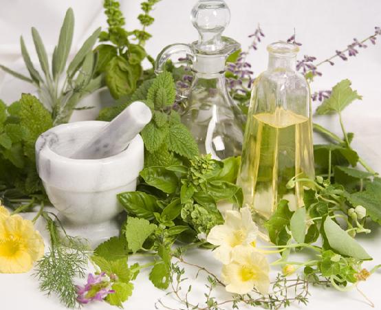 الطب البديل والعلاج بالاعشاب - مشروع الطب البديل