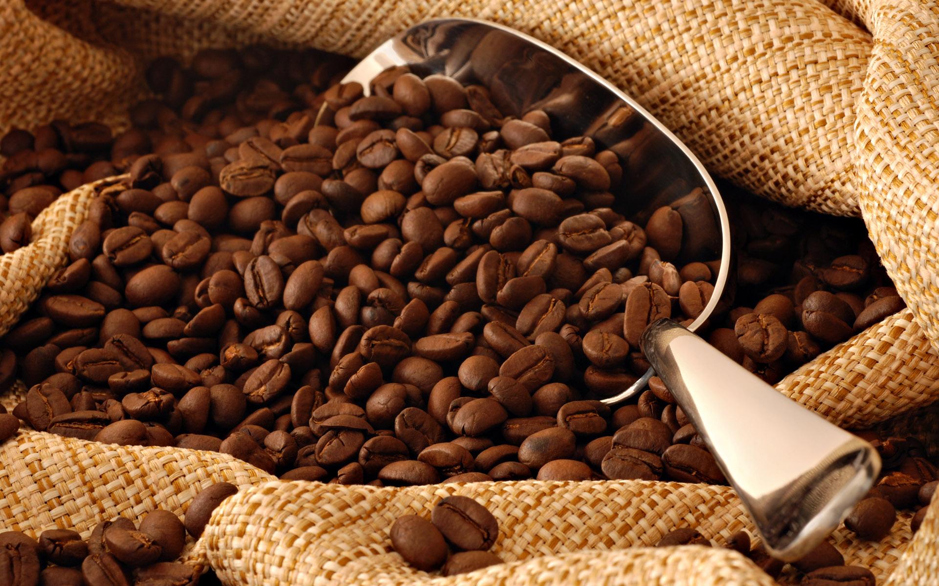 صناعة القهوة