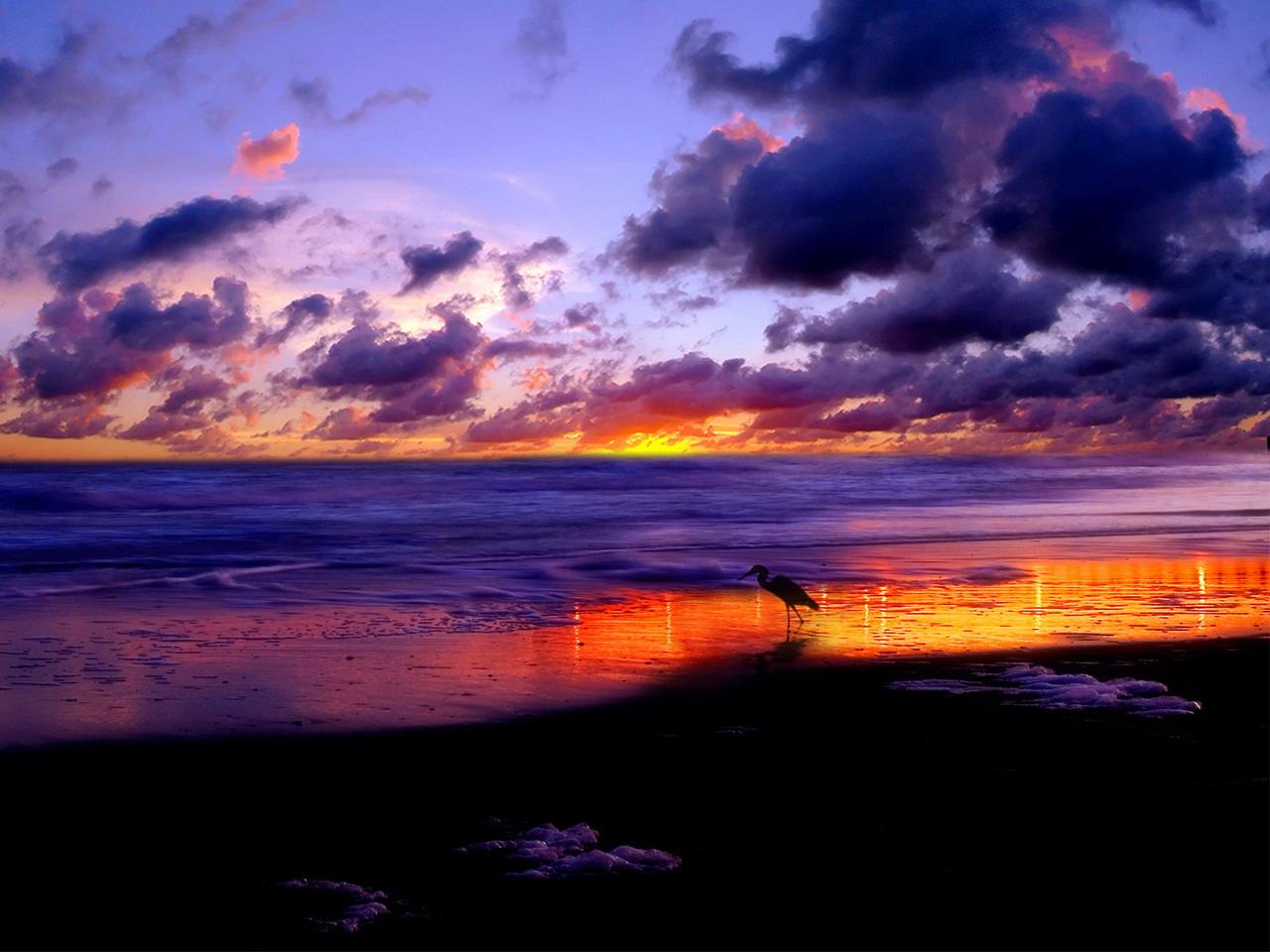 التصوير-الفوتوغرافي-للطبيعة