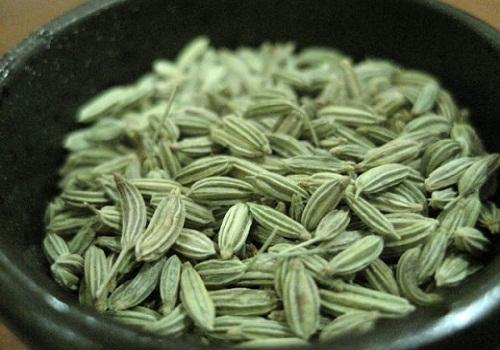 شاي-الشمار - مشروع زراعة الشاي