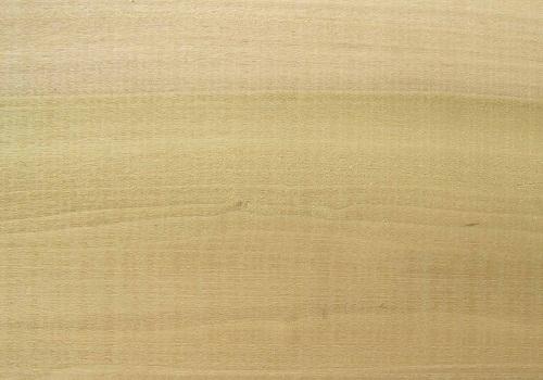 خشب الحور - الحفر على الخشب، مشروع الحفر على الخشب