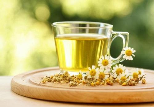 شاي-البابونج - مشروع زراعة الشاي