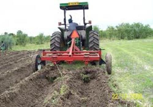 إعداد الأرض للزراعة - زراعة الكمثرى